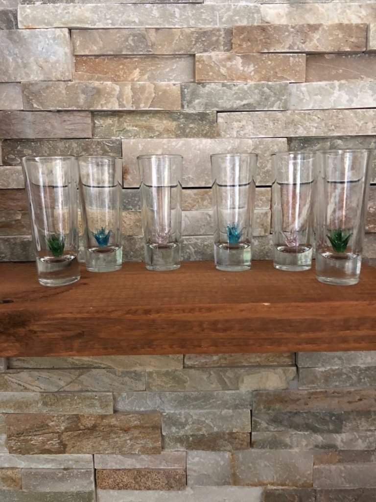 mexican artisan tequila glasses