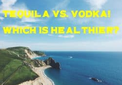 tequila vs. vodka